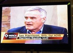 DrHarrison-TV-2011-P7250239 250x180